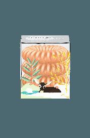 Spiralna  gumica za lase - Invisibobble oranžna